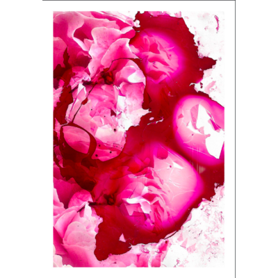 Framed Print on Rag Paper: Petals and Shards by Paola De Giovanni