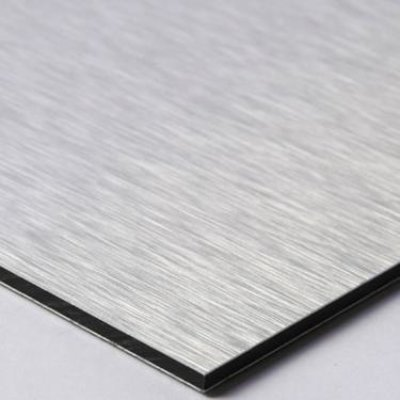 Facemount Metal: Fern by T. Paanan UV Printed on Metal
