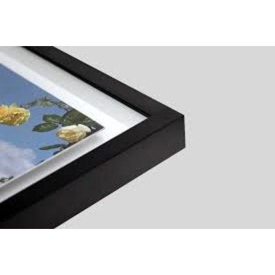 Framed Print on Rag Paper: Flying Lotus by Ana Bonet