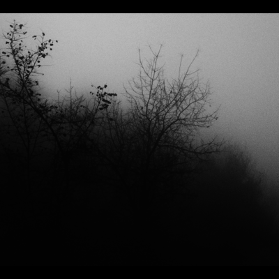 Framed Print on Rag Paper: Tomorrow at Dawn by T. Dzingharoff