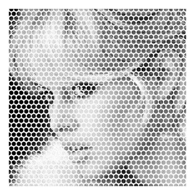 Framed Print on Rag Paper: Brigitte by Francesco Alessandrini