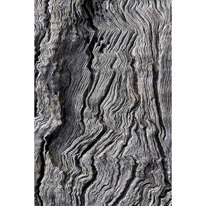 Framed Print on Rag Paper: Berkano 1