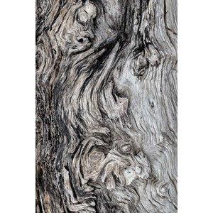 Framed Print on Rag Paper: Berkano 3