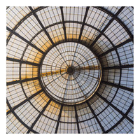 Framed Print on Rag Paper: Glass Dome
