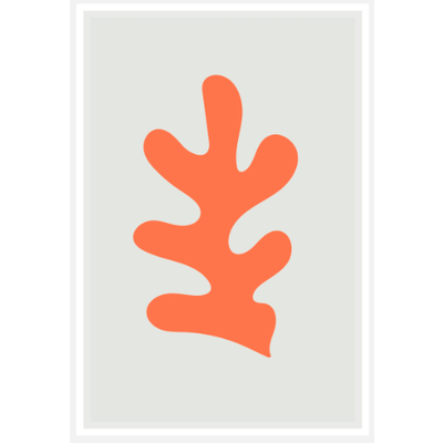 Framed Print on Rag Paper: Fiesta Orange Coral  by Alejandro Franseschini