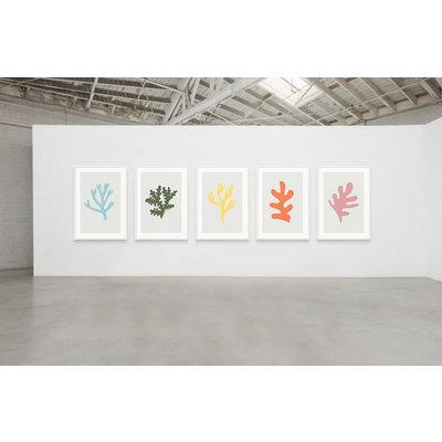 Framed Print on Rag Paper: Secret Garden Coral  by Alejandro Franseschini