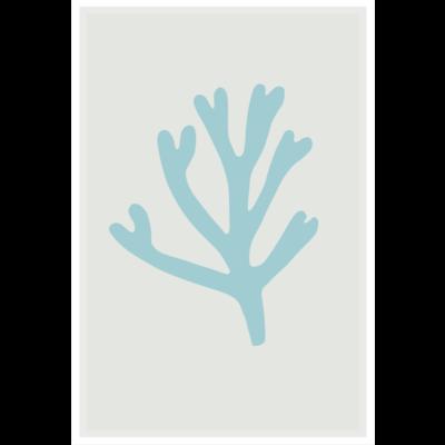 Framed Print on Rag Paper: Blue Bay Marine Coral  by Alejandro Franseschini