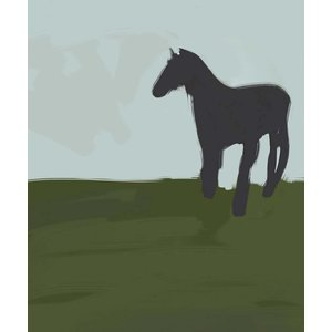 Framed Print on Rag Paper Horse by Michael Schleuse
