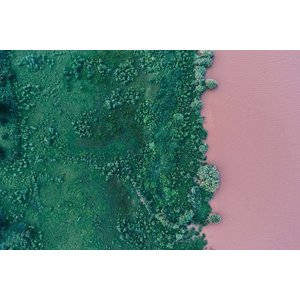 Print on Paper US250 - Green and Pink Shore