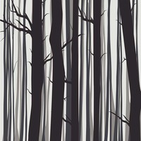 Framed Print on Rag Paper Trees by Alejandro Franseschini