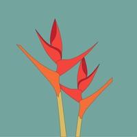 Framed Print on Rag Paper Bird of paradise flower Strelitzia