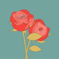 Framed Print on Rag Paper Roses Rosaceae Flower