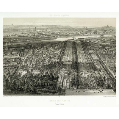 Framed Print on Rag Paper: Paris in it's Splendour The Botanical Garden