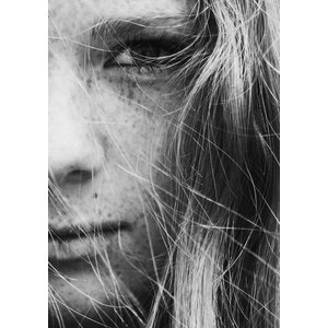Framed Facemount Acrylic I Don't Speak English