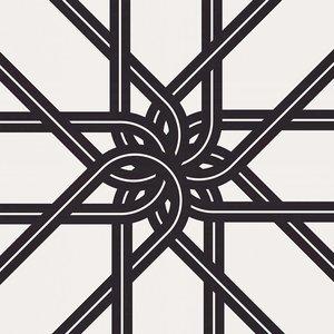 The Picturalist Framed Print on Rag Paper: Chain Flower