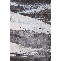 Framed Print on Rag Paper: Oblivion II