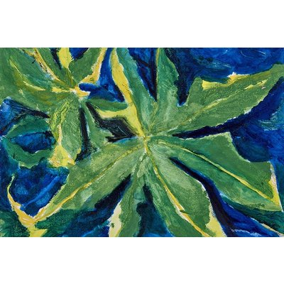 Framed Print on Canvas: Nature Studies 2 Canvas by Evelyn Ogly