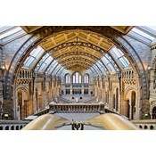 Framed Print on Rag Paper: The National History Museum by M. Beck
