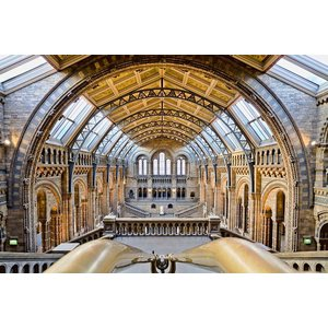 Framed Print on Rag Paper: The National History Museum