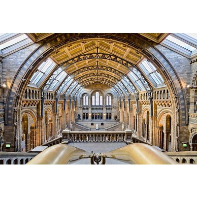 The Picturalist Framed Print on Rag Paper: The National History Museum by M. Beck