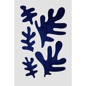 Framed Print on Rag Paper: Algae Series White by Alejandro Franseschini