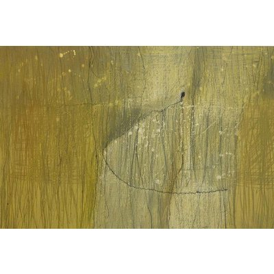 The Picturalist Framed Print on Canvas: Digression Canvas by Evelyn Ogly