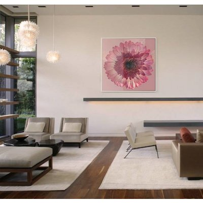 Facemount Acrylic: Pink Gerbera 1/4 Inch Thick Acrylic Glass