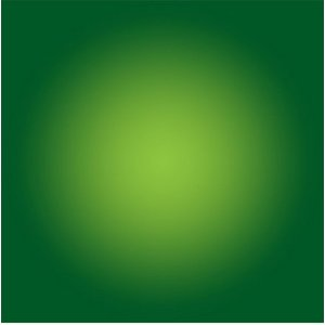 The Picturalist Facemount Acrylic: Green Halo