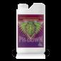 Advanced Nutrients Advanced pH Down 1 L