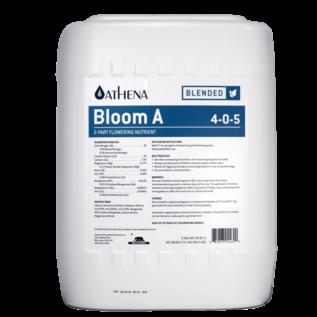 Athena Athena Bloom A 5 Gallon