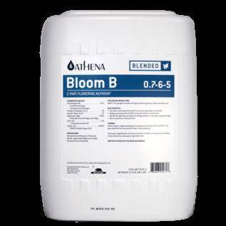 Athena Athena Bloom B 5 Gallon
