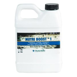 Nutrilife Nutrilife Nutri Boost 1, 500 mL
