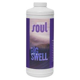 Aurora Innovations Soul Big Swell qt