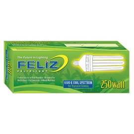 Feliz Feliz Blue Fluorescent 250 Watt 6500K (12/Cs)