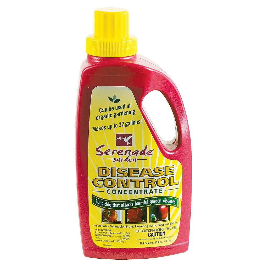 ProductsBayer Advanced Serenade Garden Disease Control Concentrate, qt -  Tampa Hydroponic Company