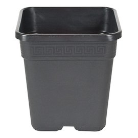 "Gro Pro Gro Pro Black Square Pot, 1/2 Gallon,  5"" x 5"" x 6"