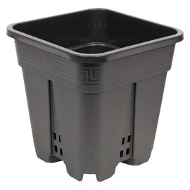 "Square Premium Black Pot, 9"" x 9"" x 10"
