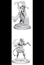 Wizkids Tiefling Female Sorcerer: D&D Nolzurs Marvelous Unpainted Minis