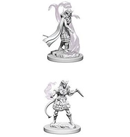 Wizkids D&D Nolzurs Marvelous Unpainted Minis: Tiefling Female Sorcerer
