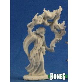 Reaper Bones: Aaron Wizard