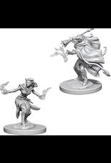 Wizkids Female Tiefling Warlock: D&D Nolzurs Marvelous Unpainted Minis