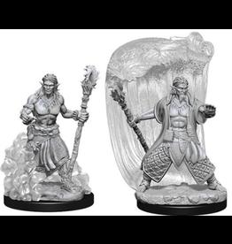 Wizkids Water Genasi Male Druid: D&D Nolzurs Marvelous Unpainted Minis
