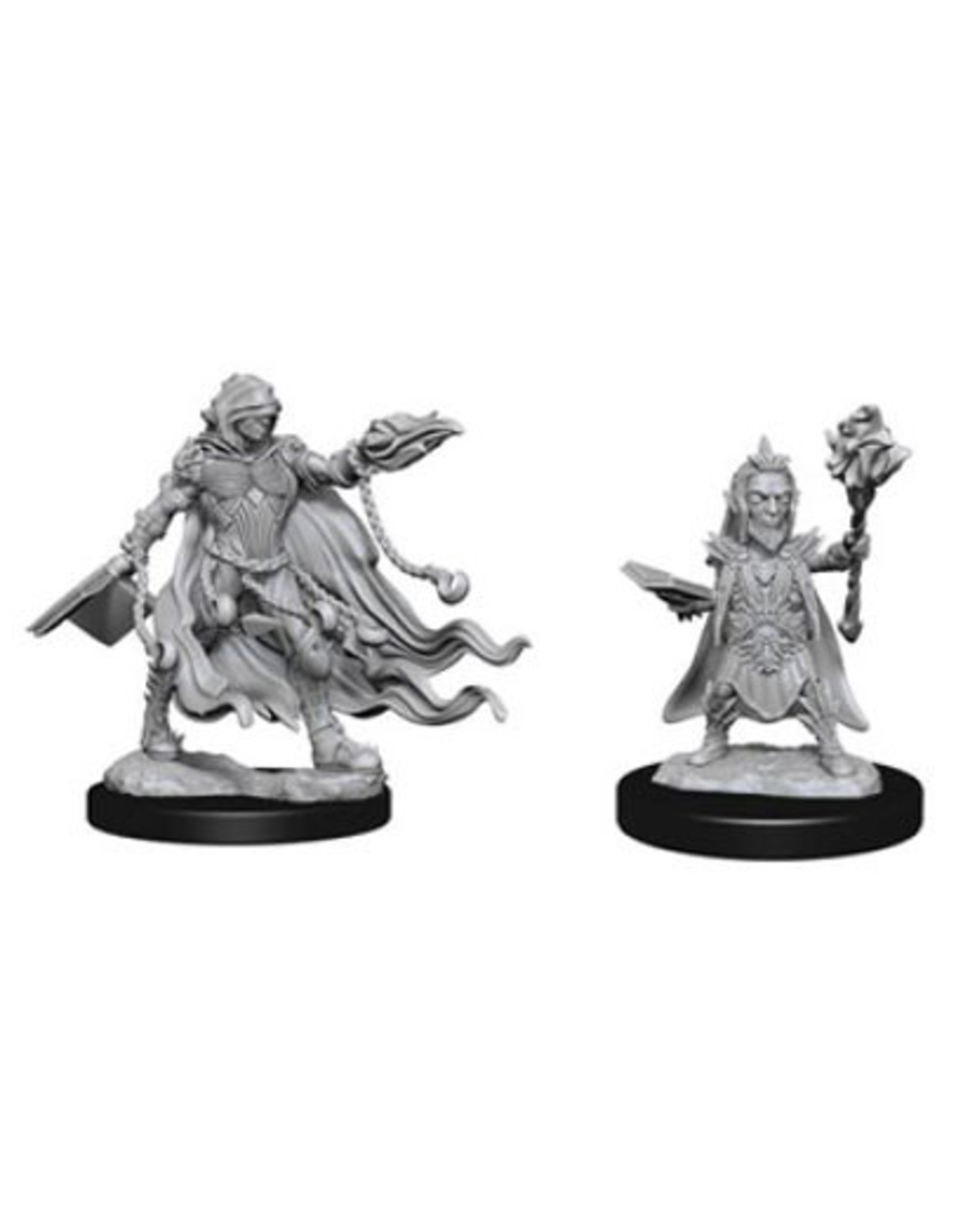 Wizkids Evil Wizards: PF Deep Cuts Unpainted Miniatures