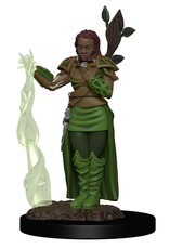 Wizkids D&D Minis: Icons of the Realms Premium Figures W2 Human Female Druid