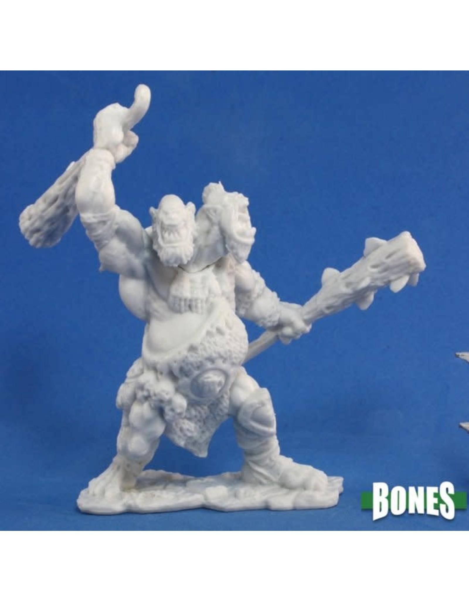 Reaper Bones: NorOkk Ettin