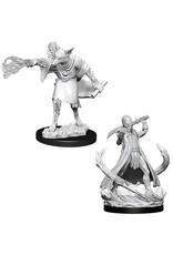 Wizkids D&D Nolzur's: Arcanaloth & Ultroloth W11