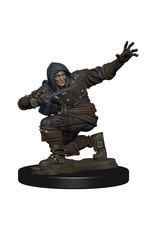 Wizkids Pathfinder Battles: Human Rogue Male W1 Premium Painted Figure