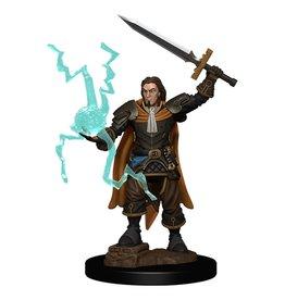 Wizkids Pathfinder Battles: Human Cleric Male W1 Premium Painted Figure