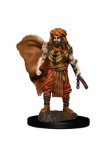 Wizkids Premium Figures - Human Druid Male W4 Icons of the Realms - D&D Minis