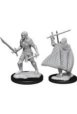 Wizkids W13  Elf Fighter Male: Pathfinder Deep Cuts Unpainted Miniatures